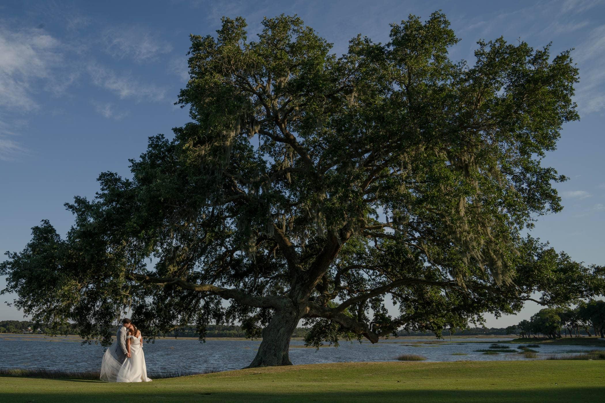 Bride and groom under huge oak tree Dataw Island Club House by Susan DeLoach Photography SC wedding photographers